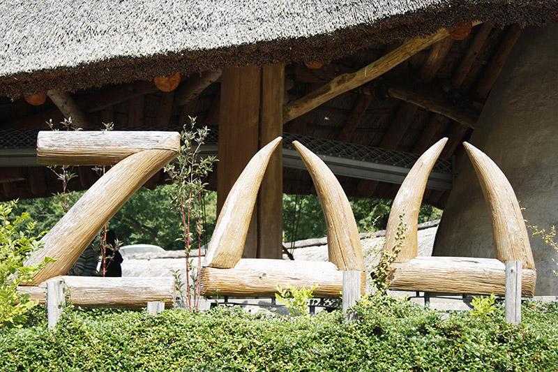 žirafy v jihlavské zoo-08