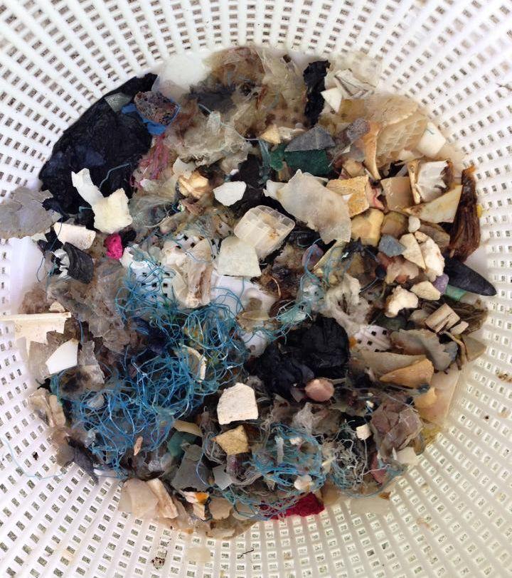 odpad v moři