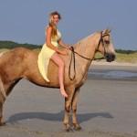 kůň bez sedla a dívka