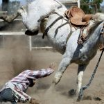 Jak zastavit splašeného koně (1. díl)