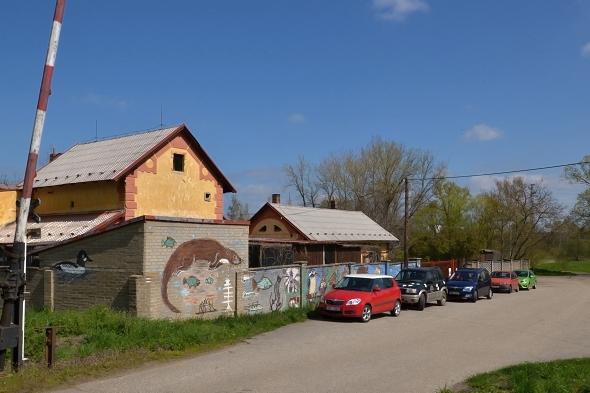 český nadační fond pro vydru