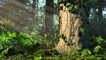příroda promlouvá