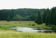 česká krajina jezero v Českém lese