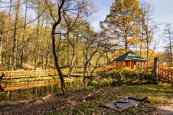Příroda hraje na podzim všemi barvami. | Kredit: © ZOO Ostrava