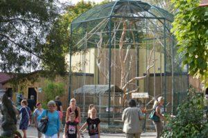 venkovní výběh langurů v Zoo Chleby