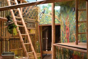 vnitřní ubikace langurů v Zoo Chleby