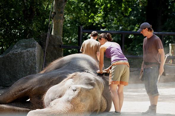 zážitkový program zoo Liberec