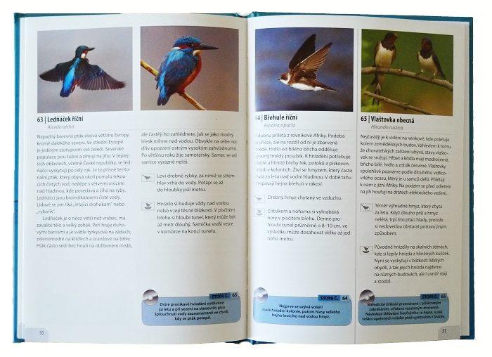 Ptáci našich vod a mokřadů
