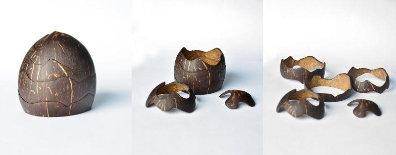 kokos místo želvy