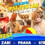SOUTĚŽ: Vyhrajte vstupenky na DogFest na Střížkově